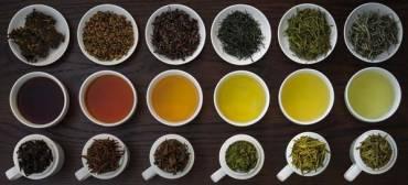 Làm sao phân biệt các loại trà?
