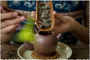 Bao nhiêu gram trà là vừa phải?