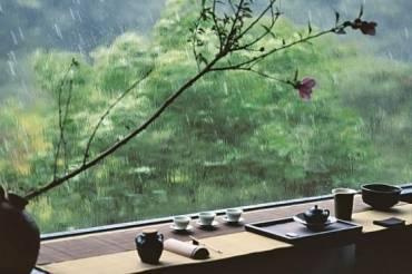 Trà những ngày mưa