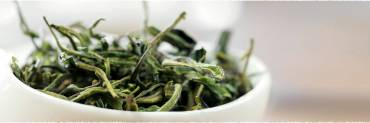Có nên bảo quản trà của bạn trong tủ lạnh?